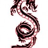 Mafia kineze tashme ne Shqiperi