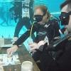 Rekord nën ujë, 36 orë lojë me letra