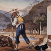 Skllevër dhe Vandalë…